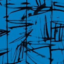 52043 3 Marcia Derse The Blue One
