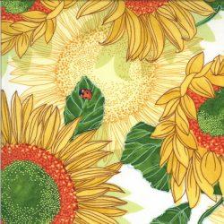 48680 11 Solana by Robin Pickens for Moda Fabrics