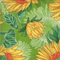 48680 15 Solana by Robin Pickens for Moda Fabrics