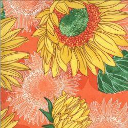 48680 18 Solana by Robin Pickens for Moda Fabrics