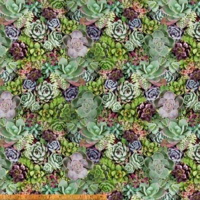 Windham Fabrics Succulent 50908-x