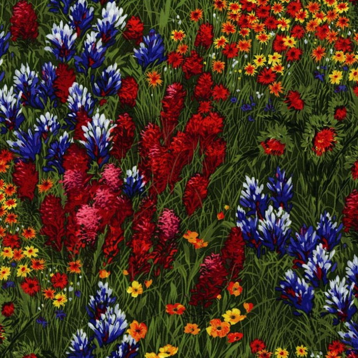 Micheal Miller Texas Wildflowers CX0400 Multi