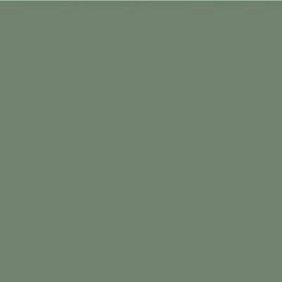 Robison Anton Polyester Thread 122P-5521 Willow