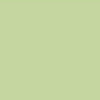 Robison Anton Polyester Thread 122p-5578 Moss