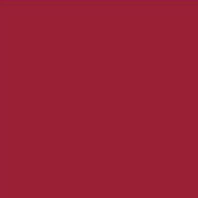 Robison Anton Polyester Thread 122P-5568 Carolina Red