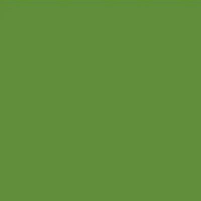 Robison Anton Polyester Thread 122p-5579 Spruce