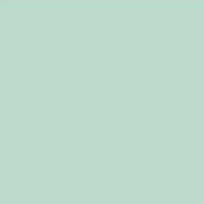 Robison Anton Polyester Thread 122p-5618 Pale Green