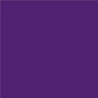 Robison Anton Polyester Thread 122P-5681 Dark Purple
