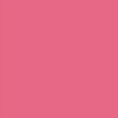 Robison Anton Polyester Thread 122P-5794 Cabernet