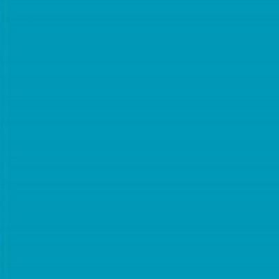Robison Anton Polyester Thread 122P-5821 Mallard Blue