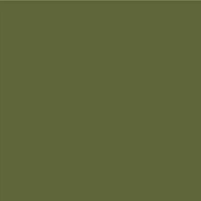 Robison Anton Polyester Thread 122p-5884 Dress Green