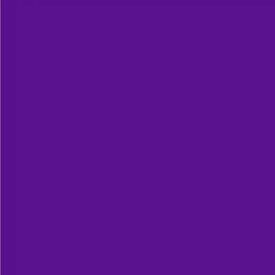Robison Anton Polyester Thread 122P-9021 Regal Purple