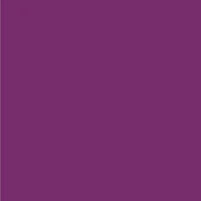Robison Anton Polyester Thread 122P-9046 Aubergine