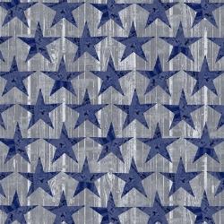 Windham Fabrics Desert Cowboy 52456D-8