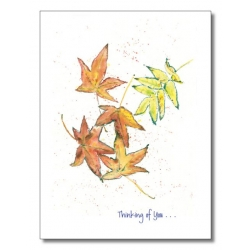 Words & Watercolors Card Comfort C4037