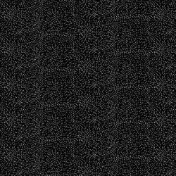Timeless Treasures Black and White C8736 Black