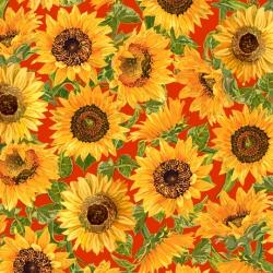 QT Fabrics Fall Splendor 28401 O