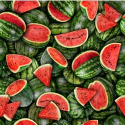 Quilting Treasures Fresh Watermelon 28449 GR