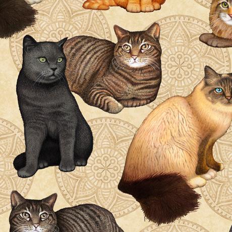 Quilting Treasers Dan Morris Cat Fabric 28488 E
