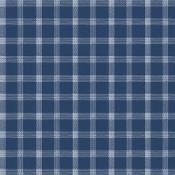 Marcus Brother Primo Plaid Flannel R0937 Blue